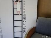 33 Cinema Jove de Valencia - 6