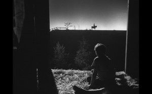La noche del cazador
