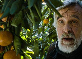Crítica película Tangerines (Mandariinid) nominada en los Oscar 2015 y comentada en filmfilicos el blog de cine