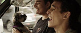 Crítica de la película A cambio de nada de Daniel Guzmán en filmfilicos el blog de cine