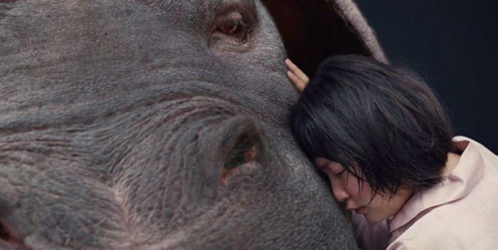 Okja, una película original de Netflix