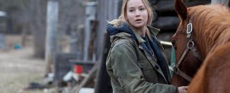 Crítica de la película Winter's Bone