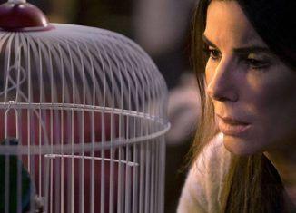 A ciegas (Bird box) | Filmfilicos