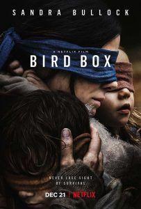 bird_box-860040347-large