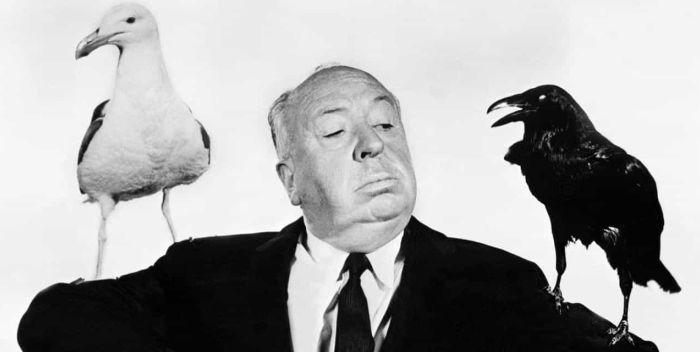 Los pájaros - Filmfilicos Blog de cine