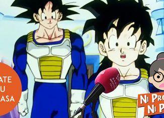 Ni programa ni programo – Quédate en tu puta casa, como Goku y Gohan