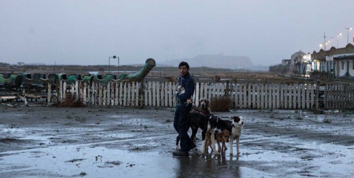 Dogman | Filmfilicos, blog de cine